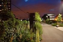 BSA-railpath-night01
